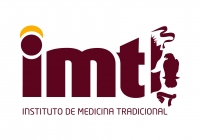 gallery/imt logo